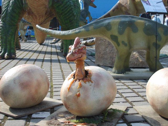 Dino - Baby frisch geschlüpft